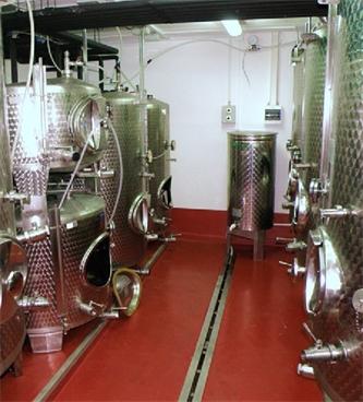 Poskrbimo za mlado vino
