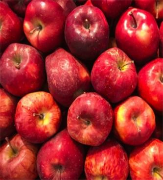 Vlada odobrila finančno nadomestilo pridelovalcem jabolk