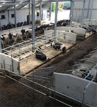 Informacije glede objave odloka: Finančno nadomestilo v prireji govejega mesa